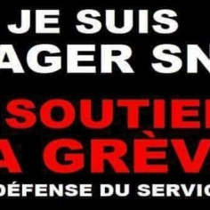 usager sncf soutien des cheminots